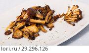 Купить «Roasted wood mushrooms», фото № 29296126, снято 16 февраля 2020 г. (c) Яков Филимонов / Фотобанк Лори
