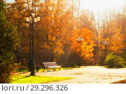 Купить «Autumn October landscape. Bench at the autumn park under colorful deciduous trees lit by bright sunlight - sunny autumn view», фото № 29296326, снято 17 октября 2018 г. (c) Зезелина Марина / Фотобанк Лори