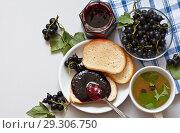 Купить «Fresh ripe black currant berries, homemade jam, a cup of currant tea and a loaf of bread with jam on a bright table. Healthy vitamin breakfast. Rural still life», фото № 29306750, снято 3 августа 2018 г. (c) Виктория Катьянова / Фотобанк Лори