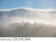 Купить «Trees covered with hoarfrost and snow in mountains. The sun's rays illuminate the trees.», фото № 29316054, снято 16 декабря 2018 г. (c) Владимир Пойлов / Фотобанк Лори