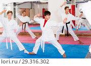 Купить «Kids in kimonos practicing effective karate techniques», фото № 29316302, снято 14 ноября 2018 г. (c) Яков Филимонов / Фотобанк Лори