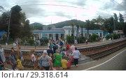 Купить «Туристы, прибывшие на станцию Лазаревская, с багажом переходят железнодорожные пути», видеоролик № 29318614, снято 23 июля 2018 г. (c) Элина Гаревская / Фотобанк Лори