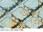 Купить «Metal architecture background. Vintage metal blue surface with rusty architectural details in form of flowers», фото № 29359746, снято 24 августа 2018 г. (c) Зезелина Марина / Фотобанк Лори
