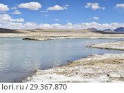 Купить «Сильно соленое озеро Nak Ruldan (Нак Рулдан) недалеко от селения Якра на Тибетском нагорье», фото № 29367870, снято 11 июня 2018 г. (c) Овчинникова Ирина / Фотобанк Лори