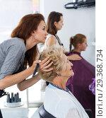 Купить «Hairdresser doing styling of senior woman», фото № 29368734, снято 26 июня 2018 г. (c) Яков Филимонов / Фотобанк Лори
