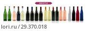 Купить «A large set of photo-realistic wine bottles», иллюстрация № 29370018 (c) Шильникова Дарья / Фотобанк Лори