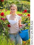 Купить «young female gardener caring roses», фото № 29383522, снято 15 сентября 2019 г. (c) Яков Филимонов / Фотобанк Лори