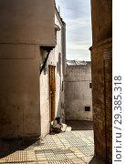 Купить «Свет и тень Сале. Улочка в старом городе Сале (Марокко) под лучами полуденного весеннего солнца и фигура сидящей женщины в национальной одежде на ступеньках дома перед золотой дверью», фото № 29385318, снято 14 января 2014 г. (c) oleg savichev / Фотобанк Лори