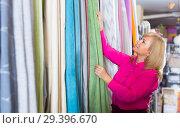 Купить «Mature female choosing curtains in the curtains shop», фото № 29396670, снято 17 января 2018 г. (c) Яков Филимонов / Фотобанк Лори