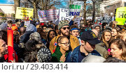 Купить «Hundreds of thousands protest against NRA during 'March for Our Lives' Rally, Washington D.C.», фото № 29403414, снято 4 июля 2020 г. (c) age Fotostock / Фотобанк Лори