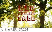 Купить «Digitally generated video of autumn sale 4k», видеоролик № 29407254, снято 21 ноября 2018 г. (c) Wavebreak Media / Фотобанк Лори
