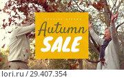 Купить «Digitally generated video of autumn sale 4k», видеоролик № 29407354, снято 21 ноября 2018 г. (c) Wavebreak Media / Фотобанк Лори