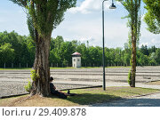 Купить «Dachau, Germany, Watchtower and safety installations in the Dachau concentration camp memorial site », фото № 29409878, снято 3 июня 2017 г. (c) Caro Photoagency / Фотобанк Лори