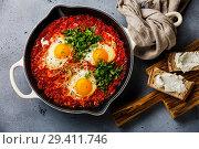 Купить «Шакшука завтрак с яйцом и томатами», фото № 29411746, снято 10 ноября 2018 г. (c) Лисовская Наталья / Фотобанк Лори