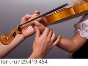 Купить «Hands of a teacher of playing the violin correct little pupil on gray background», фото № 29419454, снято 10 октября 2018 г. (c) Сергей Молодиков / Фотобанк Лори