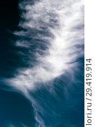 Купить «Перистое облако. Новосибирская область, Западная Сибирь, Россия», фото № 29419914, снято 5 октября 2018 г. (c) Евгений Мухортов / Фотобанк Лори