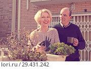 Купить «Elderly spouses in patio», фото № 29431242, снято 16 декабря 2018 г. (c) Яков Филимонов / Фотобанк Лори