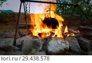 Купить «Boiling kettle hanging over the fire.», фото № 29438578, снято 28 июля 2017 г. (c) Акиньшин Владимир / Фотобанк Лори
