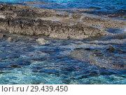 Купить «fragment of stone coast and waters of Mediterranean. Cyprus», фото № 29439450, снято 1 ноября 2018 г. (c) Володина Ольга / Фотобанк Лори