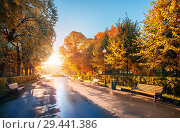 Скамейки в парке. Benches in a row in the autumn park (2018 год). Стоковое фото, фотограф Baturina Yuliya / Фотобанк Лори