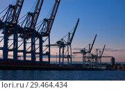 Купить «Гамбург, Германия. Краны контейнерного терминала вечером на фоне закатного неба», фото № 29464434, снято 3 ноября 2018 г. (c) Наталья Николаева / Фотобанк Лори