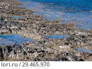 Купить «fragment of stone coast and waters of Mediterranean Sea. Cyprus», фото № 29465970, снято 1 ноября 2018 г. (c) Володина Ольга / Фотобанк Лори