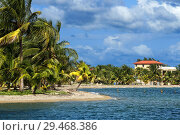 Купить «Cottages in front of the beach in Placencia, Belize.», фото № 29468386, снято 24 октября 2018 г. (c) age Fotostock / Фотобанк Лори