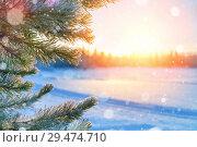 Купить «Winter landscape», фото № 29474710, снято 17 ноября 2018 г. (c) Икан Леонид / Фотобанк Лори