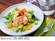 Купить «Ceviche of trout with avocado, cumquat, greens», фото № 29480682, снято 21 октября 2019 г. (c) Яков Филимонов / Фотобанк Лори