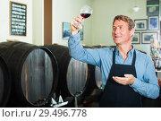 Купить «man with glass of wine in wine cellar», фото № 29496778, снято 18 декабря 2018 г. (c) Яков Филимонов / Фотобанк Лори