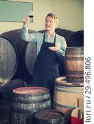 Купить «winemaker holding glass of wine in cellar», фото № 29496806, снято 18 декабря 2018 г. (c) Яков Филимонов / Фотобанк Лори