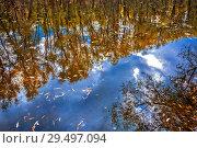 Купить «Осенний пейзаж с отражениями деревьев на реке. Протока реки Слезянки впадающей в реку Обь, Верх-Сузун, Сузунский район, Новосибирская область, Западная Сибирь, Россия», фото № 29497094, снято 22 сентября 2018 г. (c) Евгений Мухортов / Фотобанк Лори