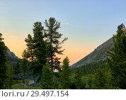Купить «Early morning in dark coniferous taiga», фото № 29497154, снято 28 июня 2018 г. (c) Виктор Никитин / Фотобанк Лори