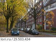 Купить «Германия. Одна из старых улиц Гамбурга осенью. Жилой квартал», фото № 29503434, снято 8 ноября 2018 г. (c) Наталья Николаева / Фотобанк Лори