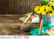 Купить «Gardening. Planting and replanting plants. A bouquet of yellow bright garden flowers in a steel bucket and garden tools on a wooden background in rustic style with a copy space», фото № 29511750, снято 9 сентября 2018 г. (c) Светлана Евграфова / Фотобанк Лори