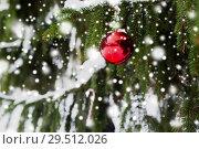 Купить «candy cane and christmas ball on fir tree branch», фото № 29512026, снято 11 ноября 2016 г. (c) Syda Productions / Фотобанк Лори