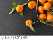 Купить «close up of mandarins on slate table top», фото № 29512654, снято 4 апреля 2018 г. (c) Syda Productions / Фотобанк Лори