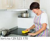 Купить «retiree woman cleaning home», фото № 29523170, снято 7 июня 2020 г. (c) Яков Филимонов / Фотобанк Лори
