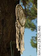 Купить «Dreamcatcher on a pine branch», фото № 29525466, снято 25 августа 2018 г. (c) Дмитрий Черевко / Фотобанк Лори