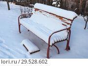 Купить «Садовая скамейка в снегу», эксклюзивное фото № 29528602, снято 28 ноября 2018 г. (c) Анатолий Матвейчук / Фотобанк Лори