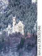 Купить «Neuschwanstein castle in Bavaria. Germany», фото № 29530046, снято 20 декабря 2012 г. (c) Наталья Волкова / Фотобанк Лори