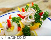 Купить «Tropical salad with squids served in lemon with cucumbers and pepper», фото № 29530534, снято 15 декабря 2018 г. (c) Яков Филимонов / Фотобанк Лори