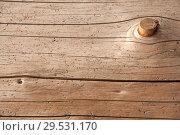 Купить «Wood background texture», фото № 29531170, снято 21 октября 2018 г. (c) Наталья Двухимённая / Фотобанк Лори
