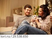 Купить «happy couple with cat at home», фото № 29538650, снято 13 января 2018 г. (c) Syda Productions / Фотобанк Лори