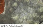 Купить «Natural aggressive volcanic hot springs splashing of bubbling mineral water», видеоролик № 29539226, снято 26 сентября 2018 г. (c) А. А. Пирагис / Фотобанк Лори
