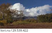 Купить «Picturesque volcanic mount landscape, view of cone volcano, yellow-orange forest», видеоролик № 29539422, снято 29 сентября 2018 г. (c) А. А. Пирагис / Фотобанк Лори