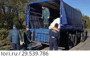 Купить «Group rescuers of Emercom of Russia unload truck with beds in tent field camping», видеоролик № 29539786, снято 3 октября 2018 г. (c) А. А. Пирагис / Фотобанк Лори