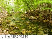 Купить «Mountain river Ulu-Uzen East or Megapotamo on the southern coast of the Crimea in the gorge Khaphal, Russia», фото № 29540810, снято 20 января 2019 г. (c) Владимир Пойлов / Фотобанк Лори