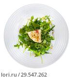 Купить «Camembert cheese with pine nuts and arugula», фото № 29547262, снято 14 июля 2020 г. (c) Яков Филимонов / Фотобанк Лори