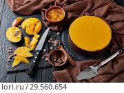 Купить «tasty chocolate mango cheesecake, close up», фото № 29560654, снято 9 декабря 2018 г. (c) Oksana Zh / Фотобанк Лори